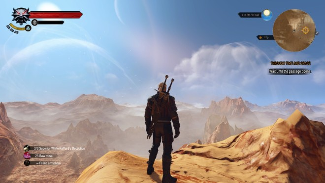 witcher 3 a